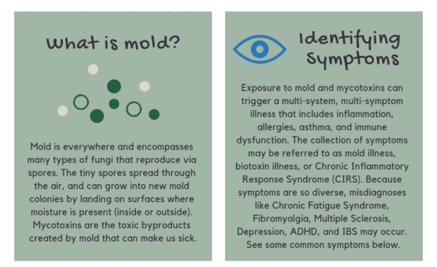 Mold Illness and CIRS - Symptoms, Tests, Treatments