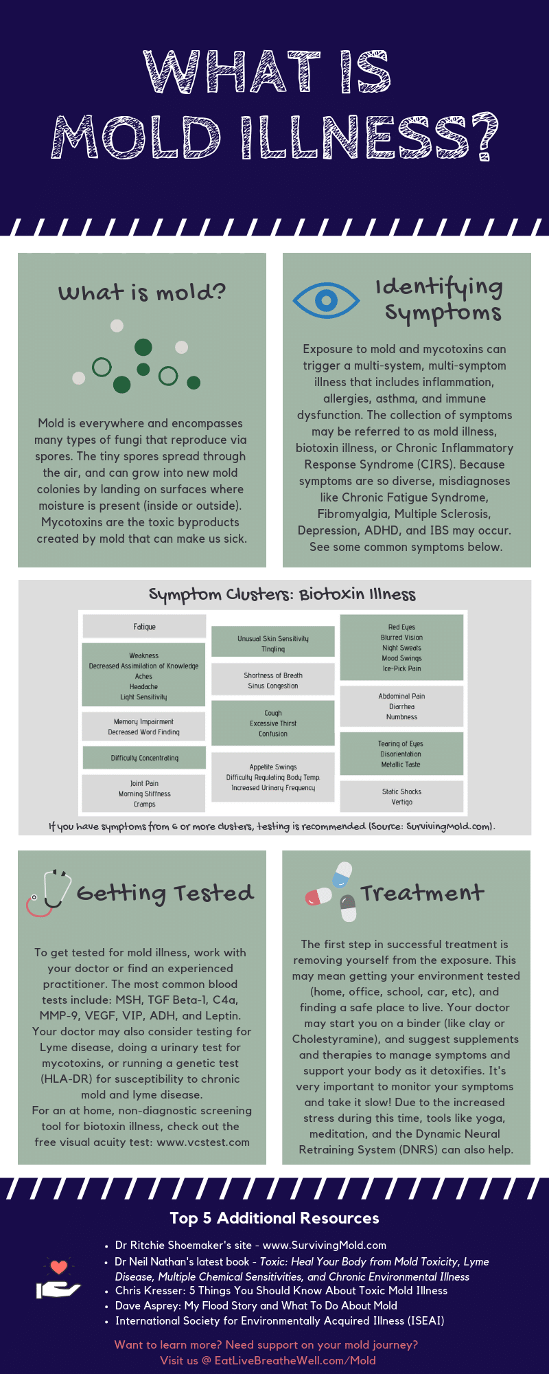 What Is Mold Illness Infographic